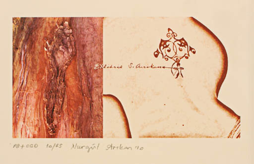 Exlibris by Nurgül Arikan from Turkey for Soykan Arikan - Abstract